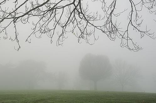 1. Brockwell Park; London