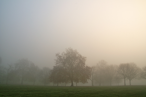 10. Brockwell Park; London
